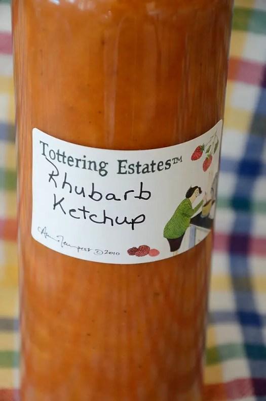 Rhubarb Ketchup