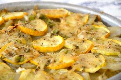 Rounds of summer squash and potatoes in a circular pan with herbs and cheese topping
