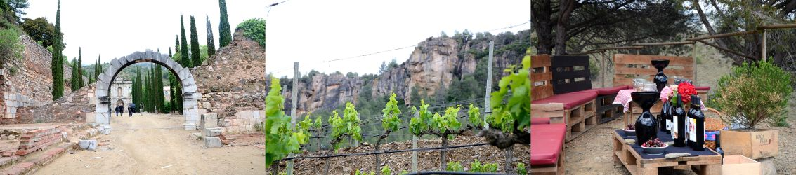 Collage of Priorat wine region with Scala Dei entrace, vines on slate slopes and a tasting in a vineyard