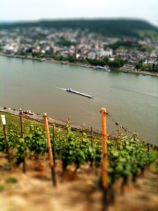 ship on the Rhein