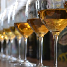 Sherry en rama, tasting with Beltran Domecq, president of the Sherry Institute