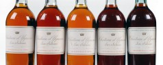 Upcoming – 5 decades of Chateau d'Yquem at Nobu London