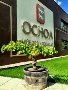 At Ochoa Bodega