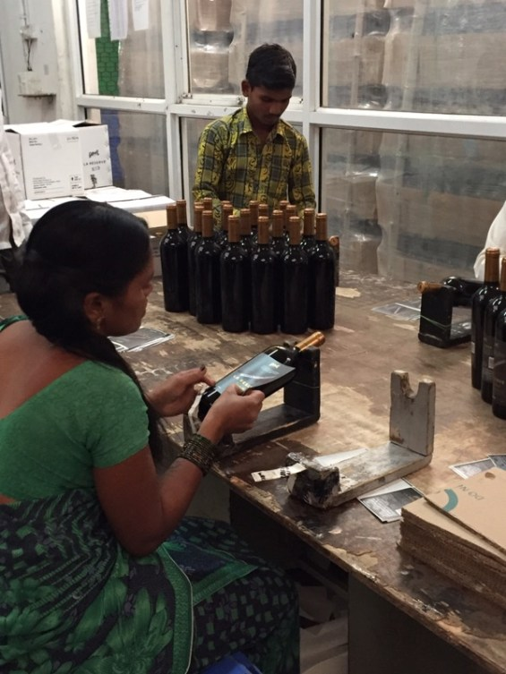 applying labels by hand at Grover Zampa, Nashik Valley, Maharashtra, India, Indian wine