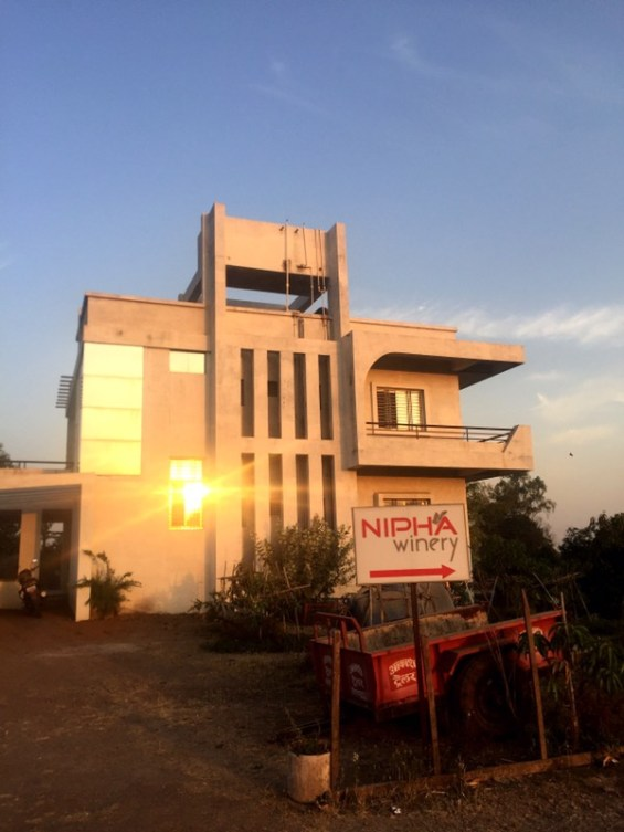 Nipha Winery, Nashik Valley, India, Indian wine, Maharashtra