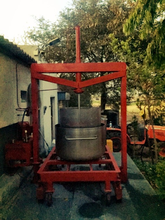 handmade basket press, Nipha Winery, Nashik Valley, India, Indian wine, Maharashtra