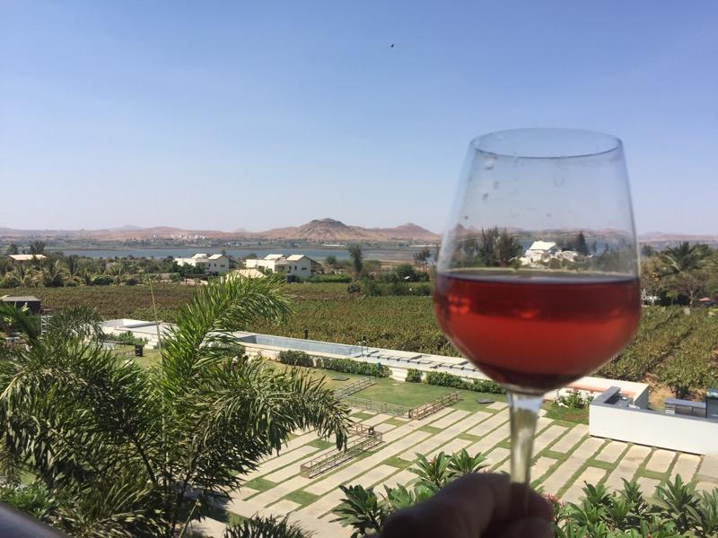 rose wine at Soma Resort and Vineyards, Nashik Valley,Maharashtra, India