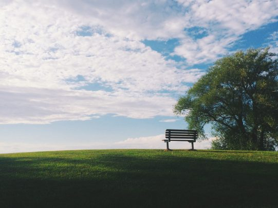 black wooden bench near green leaf trees under white clouds during daytime grief