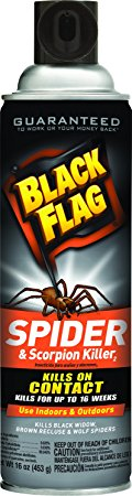 3. Black Flag Spider and Scorpion Killer