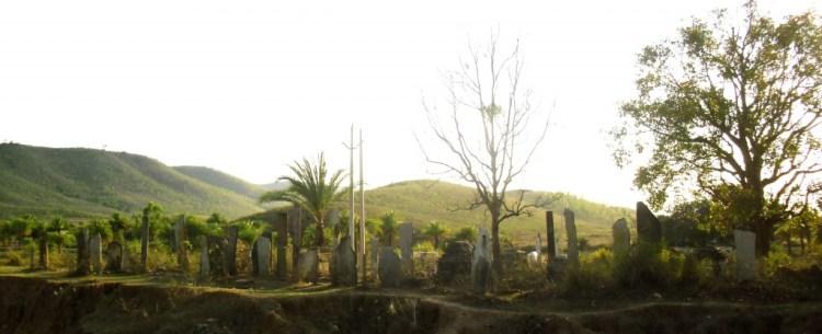 Menhirs lining the road to Sirisguda. Credit: Nandini Sundar