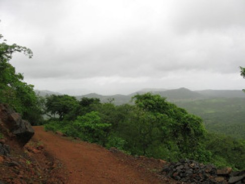 The forests of Raigad. Credit: Khalil Sawant/Flickr CC 2.0