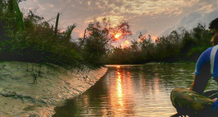 Sundarbans. Credit: joiseyshowaa/ Flickr, CC BY-SA 2.0