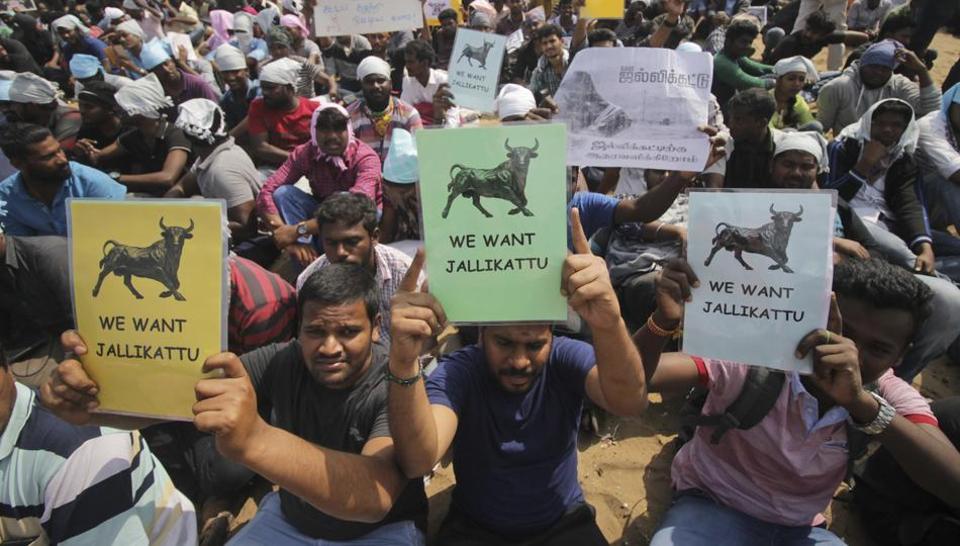 Protesters at the Marina Beach. Credit: AP
