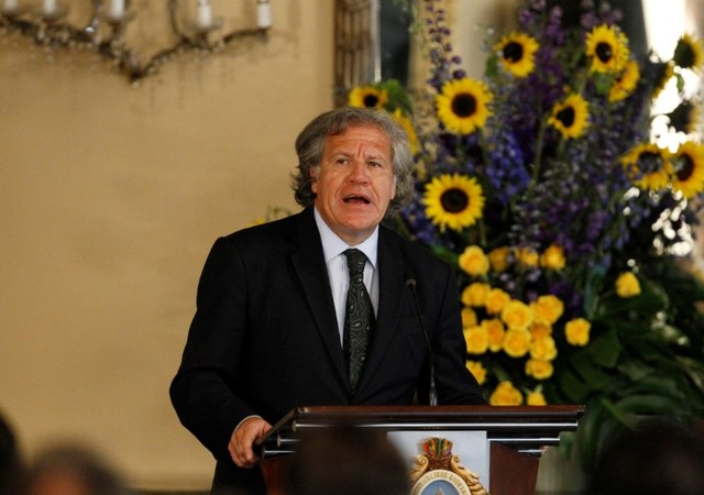 Organization of American States (OAS) Secretary-General Luis Almagro addresses the audience during an official visit to Honduras, in Tegucigalpa, January 17, 2017. Credit: Jorge Cabrera/Reuters