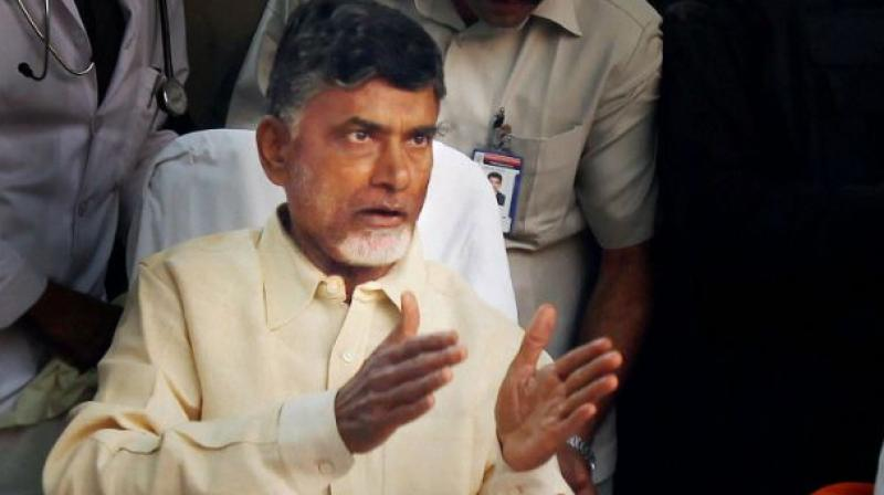 Andhra Pradesh chief minister Chandrababu Naidu. Credit: PTI