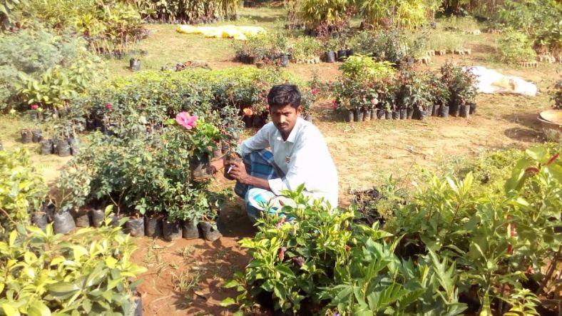 Thiruvengadam in his farm. Credit: Prabhu M.J.