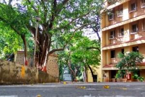 The Tata Institute for Social Sciences campus in Mumbai. Credit: Pallavi Krishnappa