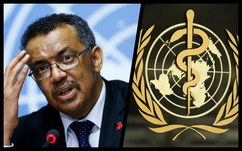 Tedros Adhanom Ghebreyesus takes over as WHO director general on July 1. Credit: Reuters