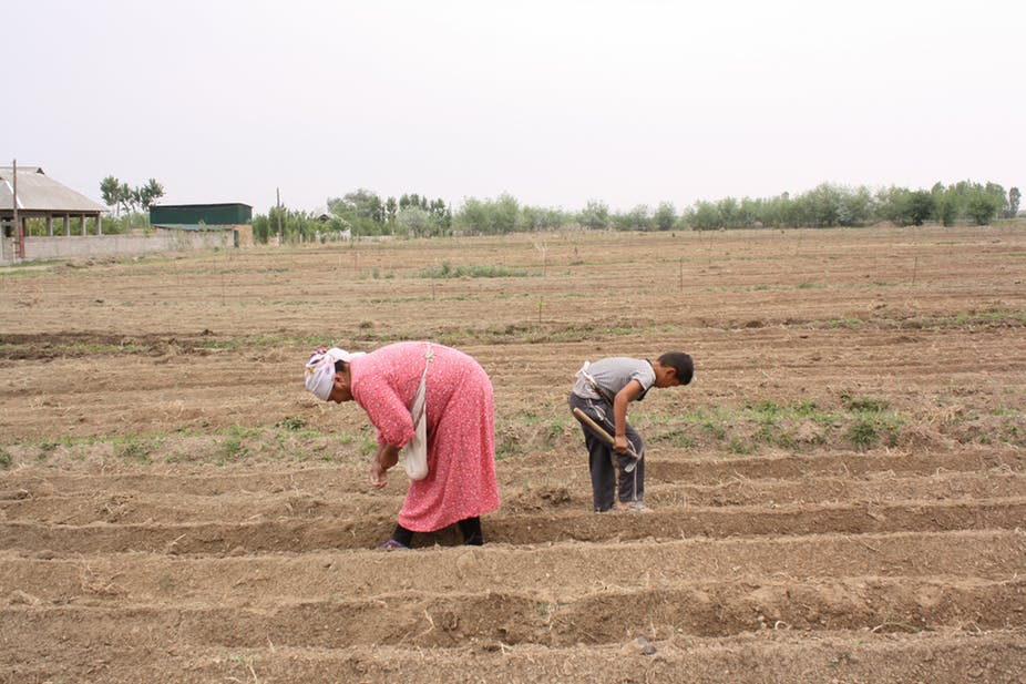 Kyrgyz women have gradually replaced men in various tasks, at home but also as migrant labourers. Credit: Author provided