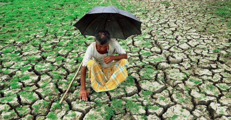 India Farmers PTI