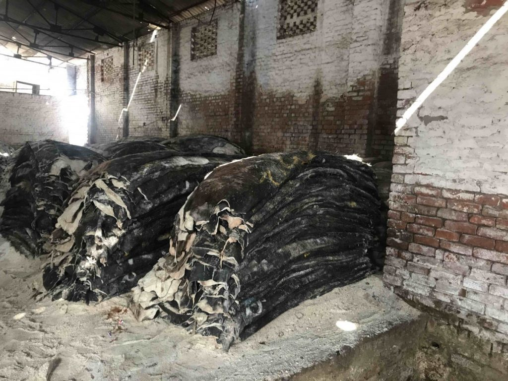 Kanpur Tannery 1 Photo By Manira