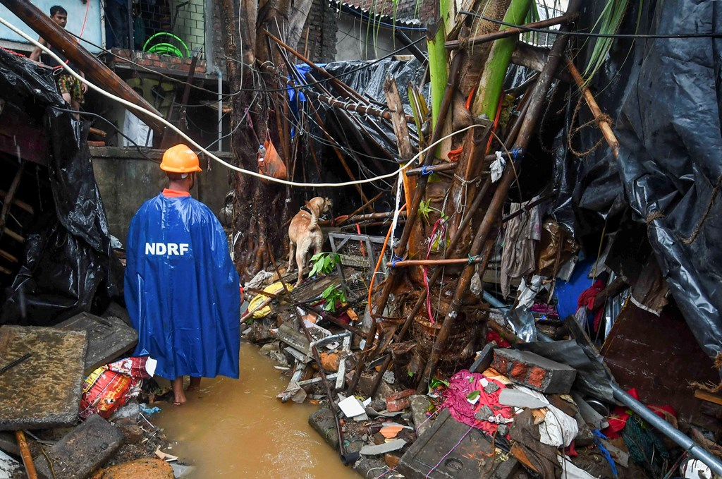 Mumbai: A rescue team member with a sniffer dog searches for people trapped under the debris of a compound wall that collapsed during heavy rain, in Pimpripada of Malad East, Mumbai, Tuesday, July 02, 2019. (PTI Photo/Shirish Shete)(PTI7_2_2019_000108B)