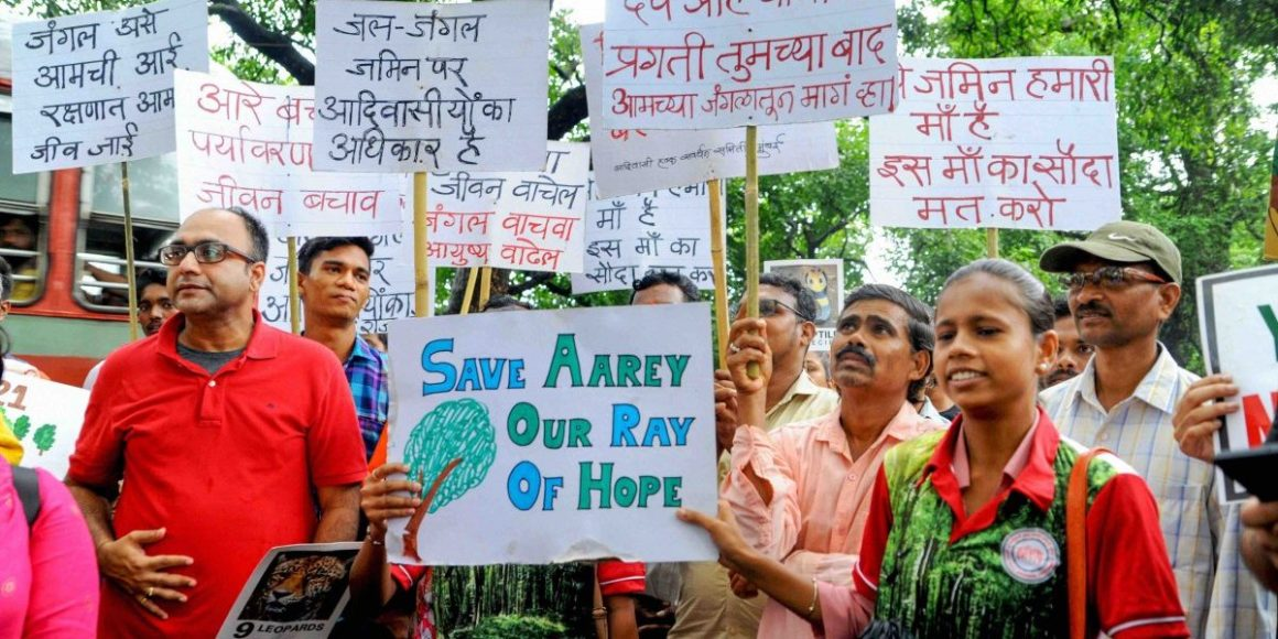 A protest against the proposed cutting of over 2,700 trees in Mumbai's Aarey Colony. Photo PTI