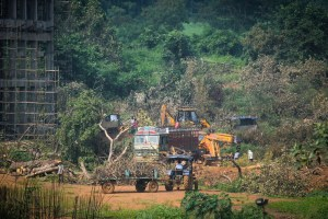 Mumbai: A tractor carries away the fallen trees for building a construction site of metro car parking shed at Aarey Colony, Mumbai, Monday, Oct. 7, 2019. The Supreme Court on Monday restrained authorities from cutting any more trees in Mumbai's Aarey colony the shed before further hearing on Oct. 21. (PTI Photo) (PTI10_7_2019_000203A)