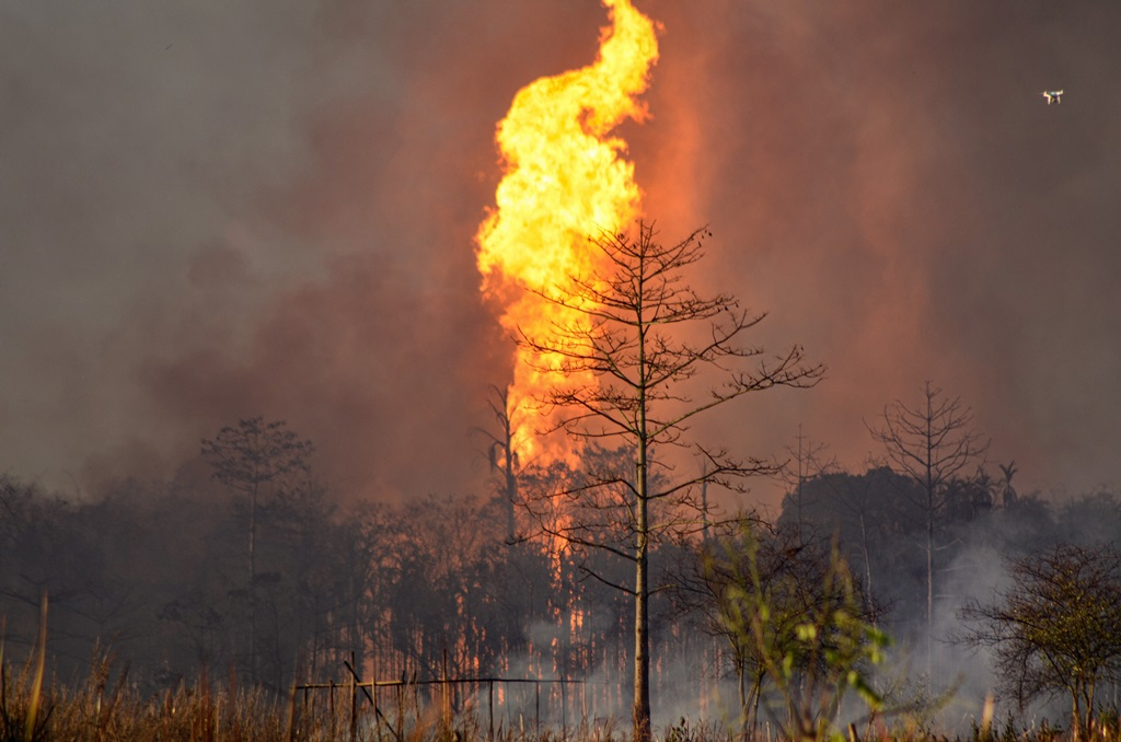Tinsukia: Smoke billows from a fire at Baghjan oil field, a week after a blowout, in Tinsukia district, Tuesday, June 9, 2020. A team from Singapore was called to assess the reason of the blowout yesterday. (PTI Photo)(PTI09-06-2020_000234B)