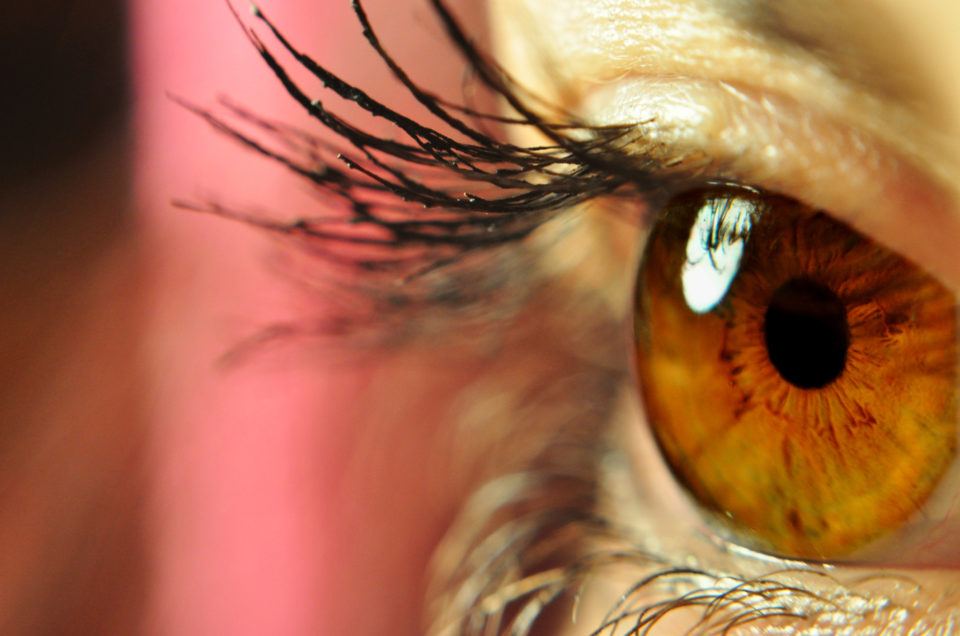 a shallow depth macro image of an eye focused on the iris.