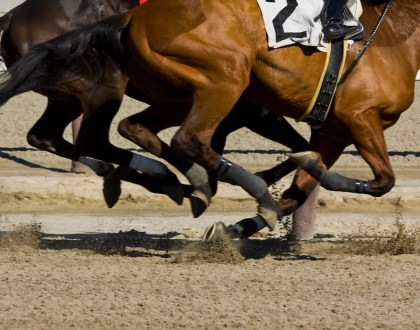 Grief and Grit: My Father's Horse GamblingHabit