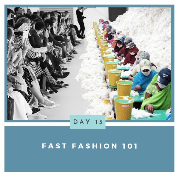 Fast Fashion 101