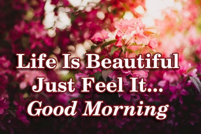 beautiful-good-morning-quotes-with-flowers-wallpapers-images-text-message-for-facebook