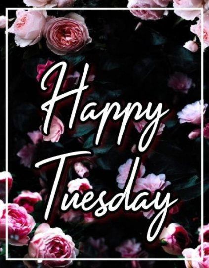 best-happy-tuesday-greetings-cards-wishes-images-wishing-pictures-wallpapers-free-download