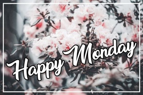 happy-monday-greetings-wishing-wishes-images-pictures-free-download-for-facebook