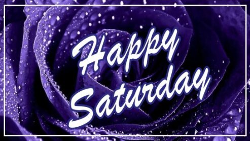 happy-saturday-blue-flowers-background-pictures-wishes-images-wallpaper-wishing-free-download