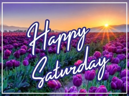 happy-saturday-flowers-wallpaper-pictures-wishing-greetings-images-free-download-for-facebook-whatsapp-status