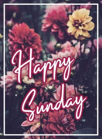 happy-sunday-wishing-pictures-wishes-greetings-images-wallpapers-free-download