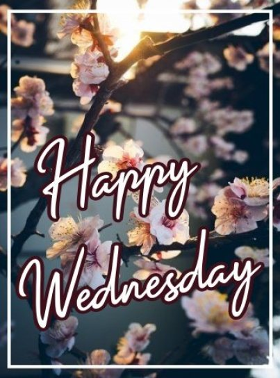 happy-wednesday-e-card-hd-images-wishes-greetings-wishing-pictures-free-download
