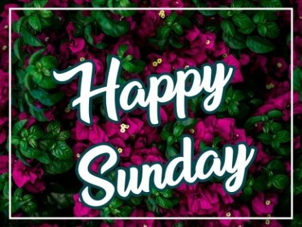 special-happy-sunday-wishing-e-card-greetings-images-pics-wishes-pictures-for-facebook-whatsapp-status-free-download