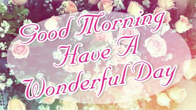 best-good-morning-have-a-wonderful-day-red-flowers-images-pictures-wishing-greetings-wallpapers-for-friends-free-download