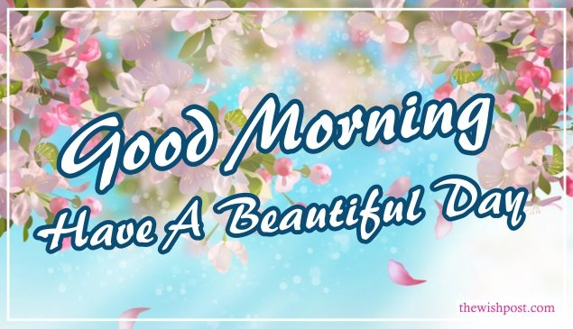 elegant-good-morning-have-a-beautiful-day-with-flowers-sky-images-wallpaper-wishing-pics-greeting-cards-pictures-for-friends-free-download