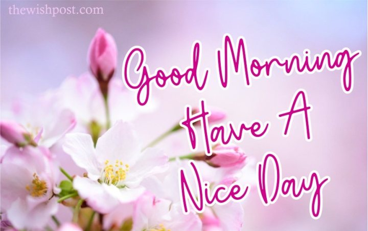 elegant-good-morning-have-a-nice-day-with-pink-flowers-images-wallpaper-wishing-pics-greeting-cards-pictures-for-friends-free-download