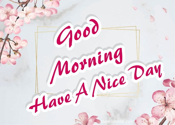 fabulous-good-morning-have-a-nice-day-flowers-greetings-card-images-pictures-wishing-wallpapers-for-friends-facebook-whatsapp-status