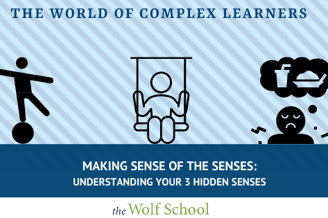 Understanding Your Senses
