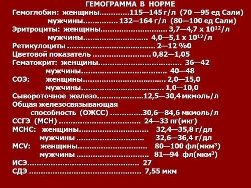 gemoglobin_zhenshini_norma3_500x375
