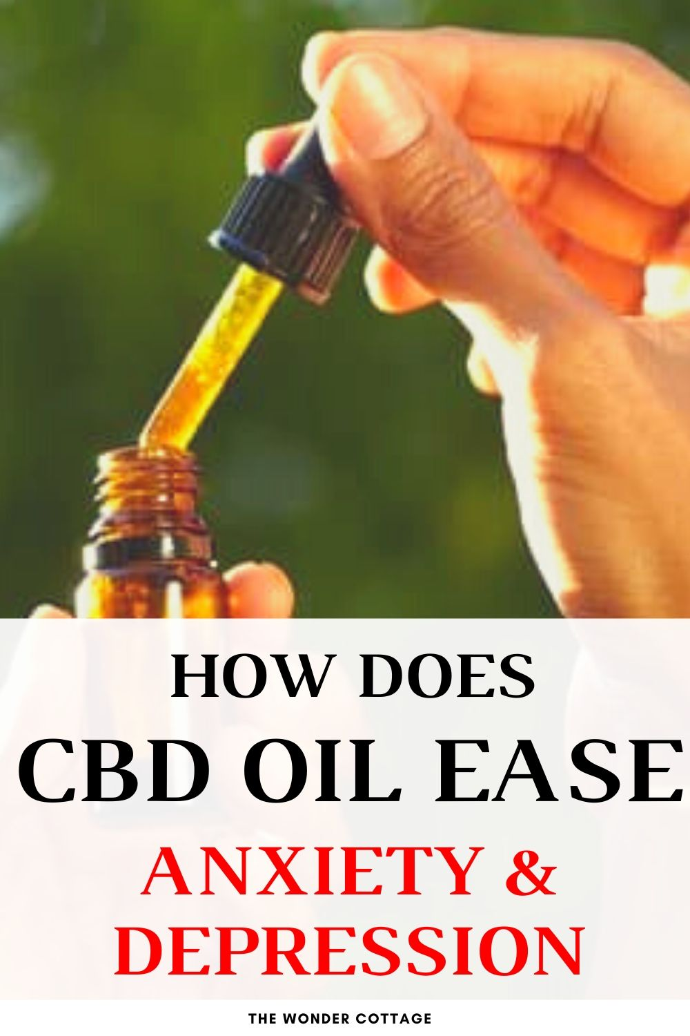 how does cbd oil ease anxiety