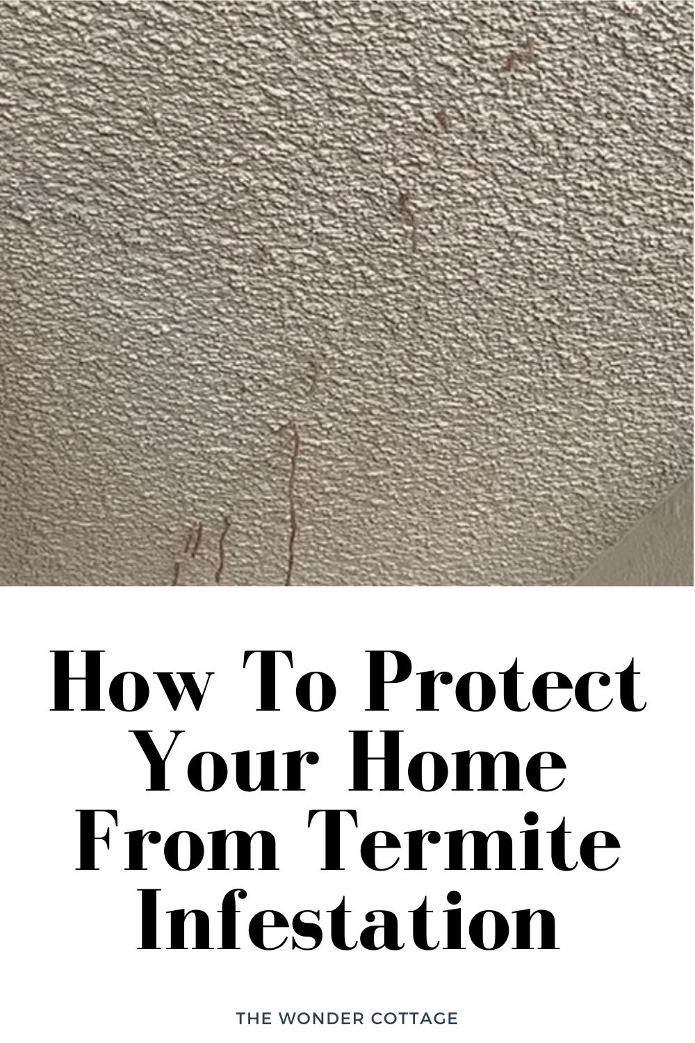 how to protect your home from termite infestation