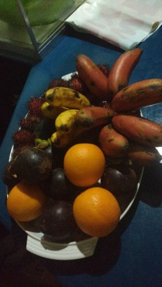 Mangosteen, oranges, yellow and RED bananas (these were new to me!)