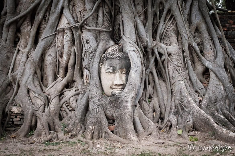 Buddha Heat at Wat Phra Mahatat